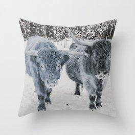 Scotish Highland cattle Throw Pillow