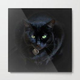 When A Black Cat Hearts Your Path Metal Print