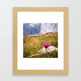 On top of Monte Baldo Framed Art Print