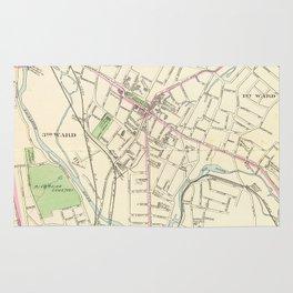 Vintage Map of Waterbury CT (1893) Rug