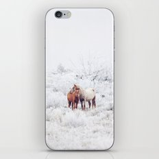 Two Winter Horses iPhone & iPod Skin