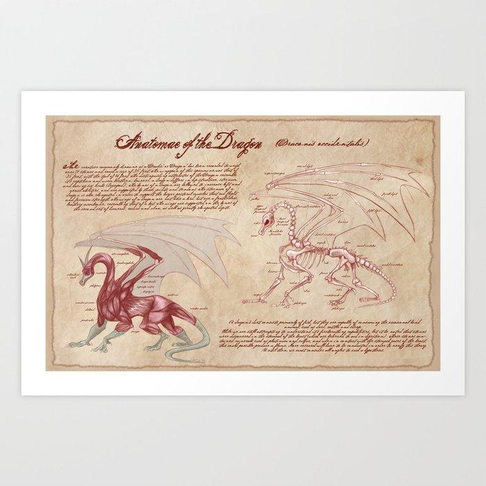 Anatomy Of The Dragon Art Print By Kazpalladino Society6