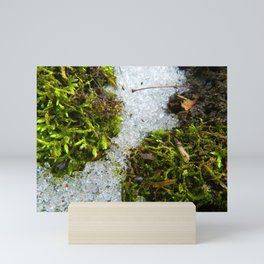 Snow and Moss Mini Art Print