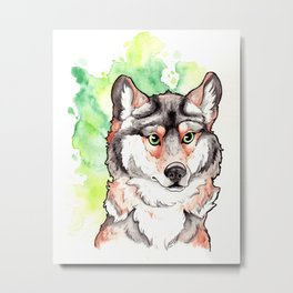 Mexican Gray Wolf Bust Metal Print