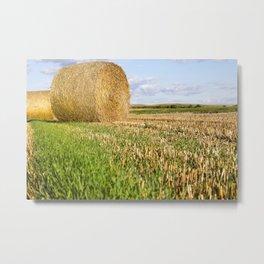 stacks of straw Metal Print
