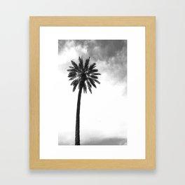 Tropical Darkroom #143 Framed Art Print