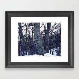 feel tree Framed Art Print