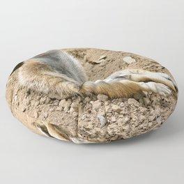 Sunny Meerkat Floor Pillow