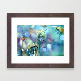 Rainbow Moss Drops Framed Art Print