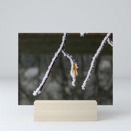 Twig with frost on it Mini Art Print