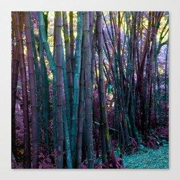 Afternoon in Wonderland Canvas Print