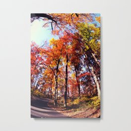 Fisheye Fall II Metal Print