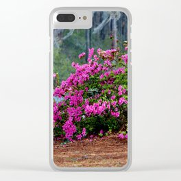 Spring By The Lake Clear iPhone Case
