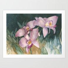 Orchid Elegance Art Print