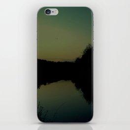 soaring at dusk iPhone Skin