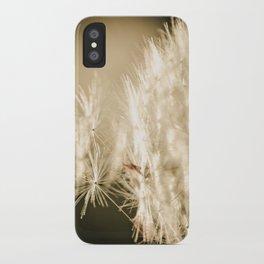 Bijoux iPhone Case