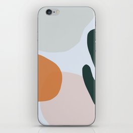 Floop 5 iPhone Skin