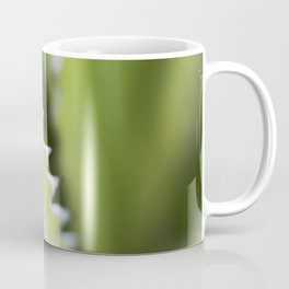 Striped Agave Macro Coffee Mug
