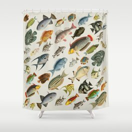 vintage fish swim on bone Shower Curtain