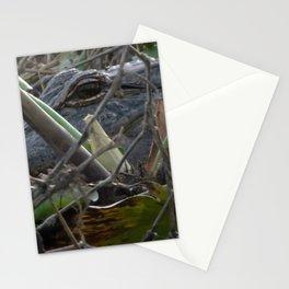 Alligator Concealed in Brush on Bank of Swamp Stationery Cards