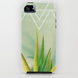 Aloe Vera Succulent with Chevron and Seafoam Background iPhone Case