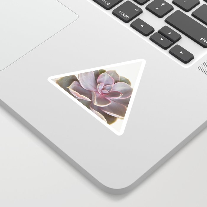 Purple Succulent Sticker