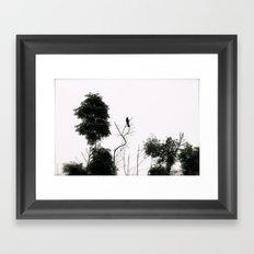 Black Bird Framed Art Print