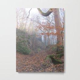 Image twenty nine Metal Print