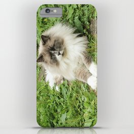 Lord Niles the Ragdoll iPhone Case