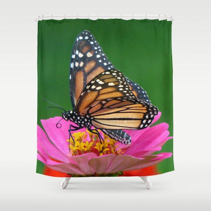 Regal Monarch Shower Curtain