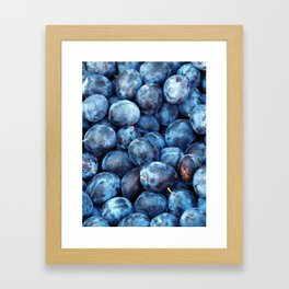 Blue Plums Fruit pattern Framed Art Print