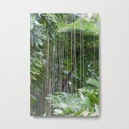 Rainforest umbrella Metal Print