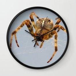 Garden/Cross Spider Wall Clock