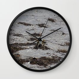 Competing Crabs Wall Clock