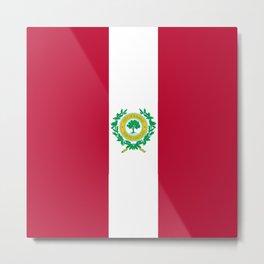 flag of raleigh Metal Print