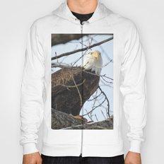 Eagles of Wisconsin 1 - A Wildlife Art Print Hoody