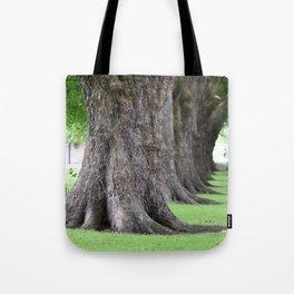 Cambridge tree 2 Tote Bag