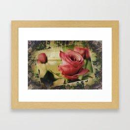 A Boxed Beauty Framed Art Print