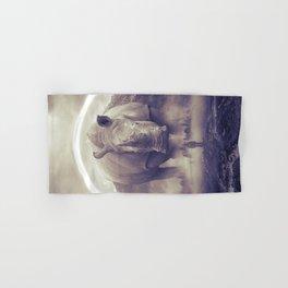 aegis II | rhino Hand & Bath Towel