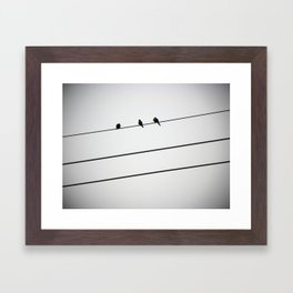 Three for Three Framed Art Print