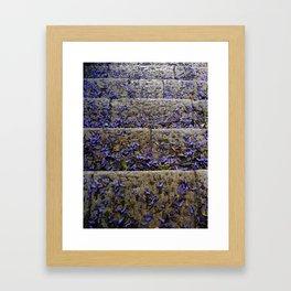 Natures Way Framed Art Print