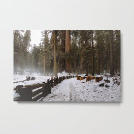 Sequoia Snow Trails Metal Print