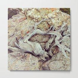 Figure Study, Mt. Baldy Metal Print