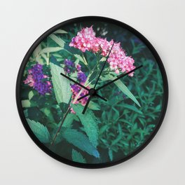 Ceanothus Wall Clock