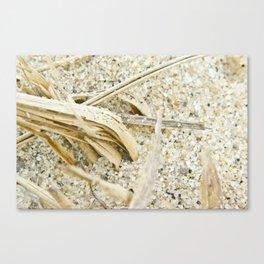sand macro  Canvas Print