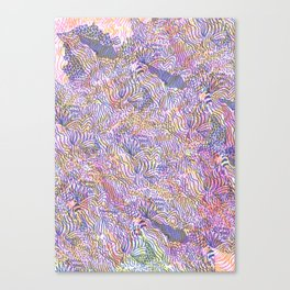 cosmology Canvas Print