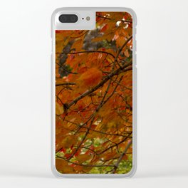 Red Maple 2017 Clear iPhone Case
