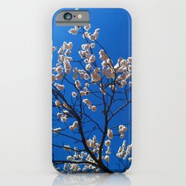 Amazing Awesome Idyllic Blossom Tree Clear Blue Sky Ultra HD iPhone Case