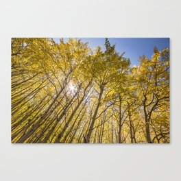 Sparkling Autumn Canvas Print