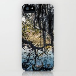 The Hanging Garden iPhone Case